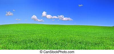 beautiful panoramic view of peaceful grassland, blue sky...