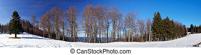 Beautiful panoramic view of winter mountain landscape