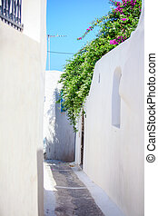 Beautiful paved street with old traditional white house in Emporio Santorini, Greece