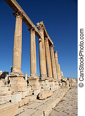 Beautiful perspective for the Roman Columns of Cardo Maximus in ancient Jerash city