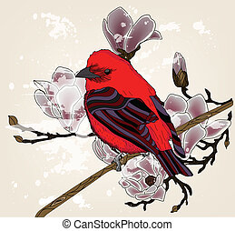 beautiful picture with bullfinch and magnolia branch