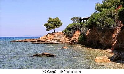 Beautiful pine on stone ledge. Sithonia peninsula. Northern...