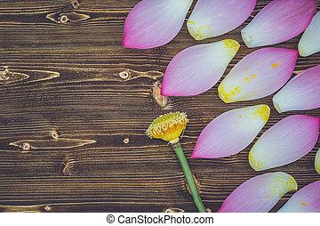 Beautiful pink bloom lotus flower on brown wooden board