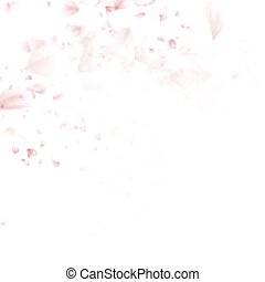 Beautiful pink cherry blossom. EPS 10