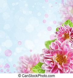 beautiful pink flowers on bokeh background