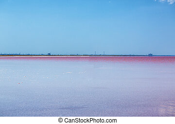 beautiful pink lake on a Sunny day.