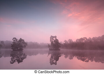 beautiful pink misty sunrise over wild lake