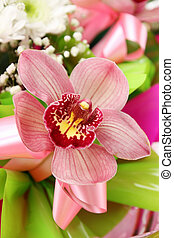 Beautiful pink orchid Orchidaceae in a bouquet