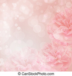 Beautiful pink rose on bokeh background - Beautiful pink...