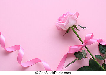 Beautiful pink rose with bow on pastel pink background