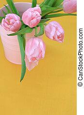 Beautiful pink tulips on yellow background