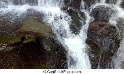 Beautiful place Shipot waterfall in the Carpathians, Ukraine. slow motion