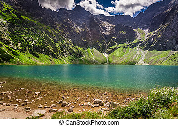 Beautiful pond in the mountains at summer, Poland, Europe