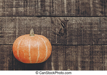 beautiful pumpkin on rustic wooden background, top view. space for text. cozy autumn mood. fall holiday. stylish halloween or thanksgiving concept greeting card. simple flat lay