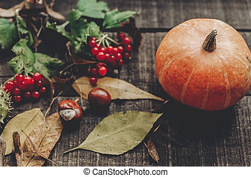 beautiful pumpkin with leaves and berries on rustic wooden background, top view. space for text. thanksgiving or halloween concept greeting card. cozy autumn mood. fall holiday