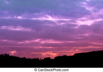 Beautiful purple, red sky above forest silhouette at sunset