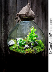 Beautiful rain forest in a jar, save the earth concept