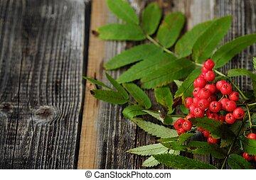Beautiful red autumn rowan on a wooden table