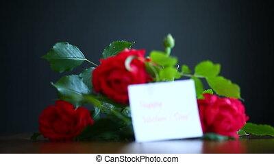 beautiful red blooming roses