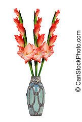 Beautiful red gladiolus in vase isolated on white background