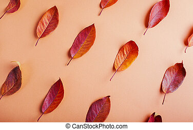 Beautiful red leaves on brown paper. Abstract autumn background.