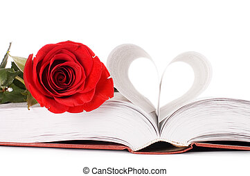 Beautiful red rose on the book isolated