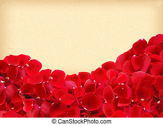beautiful red rose petals on paper background