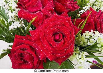 Beautiful red rose