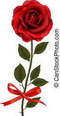 Beautiful red rose with a bow. Vector illustration.
