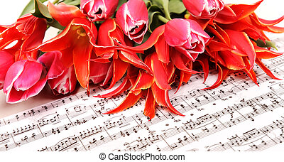 red tulips with music sheet page - beautiful red tulips with...