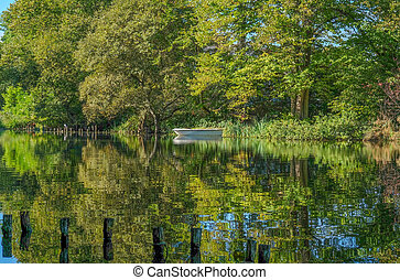 Beautiful reflections in the lake