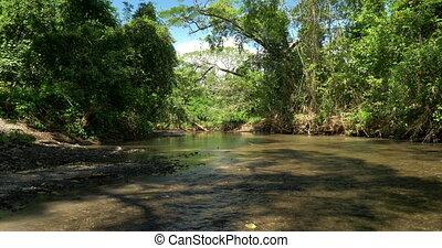 Beautiful River In The Jungle, Costa Rica, Native Version -...