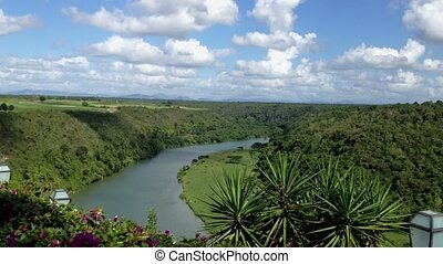 Beautiful river in tropical forest