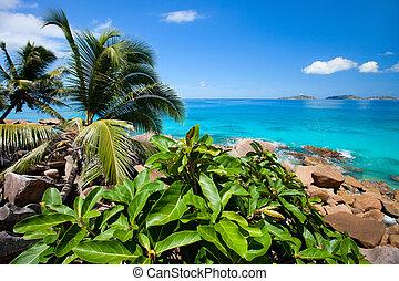 Beautiful rocky coast in Seychelles - Beautiful rocky coast ...