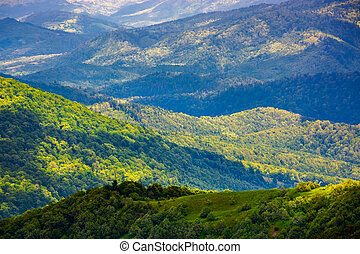 beautiful rolling hills of Carpathian mountains. lovely...