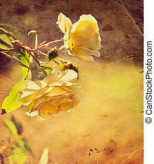 beautiful romantic background with yellow roses, petals and...