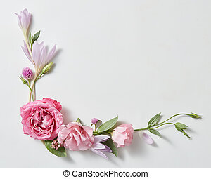 beautiful roses frame