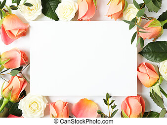 Beautiful roses on white background with space for text
