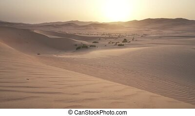 Beautiful Rub al Khali desert at sunrise stock footage video