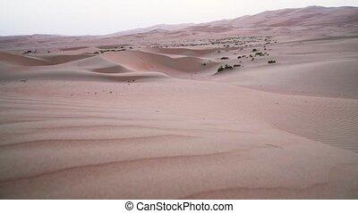 Beautiful Rub al Khali desert at sunset United Arab Emirates...