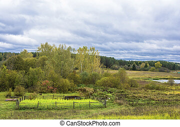 Beautiful rural autumn landscape with a cloudy sky, Russia.