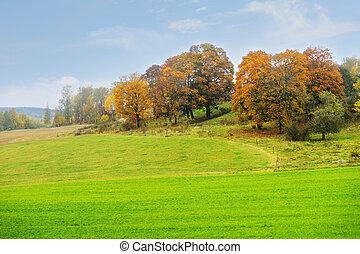 Beautiful rural autumn landscape