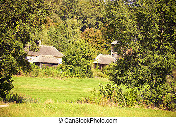 Beautiful rural cottage in summer t