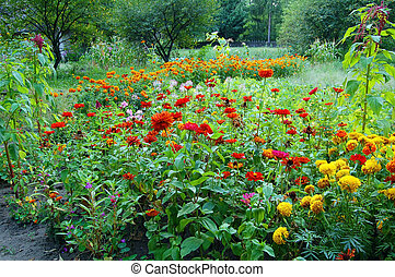 Beautiful rural flowerbed with many different flower