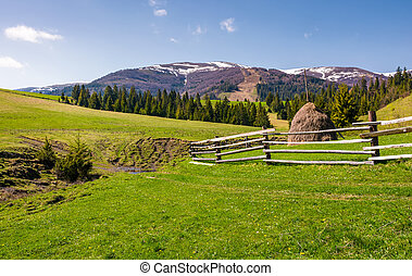 beautiful rural scenery in springtime. wooden fence and...