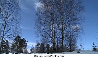 Beautiful Russian winter landscape video