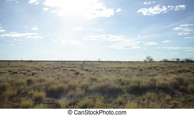 Beautiful safari desert landscape - A shot from inside a car...
