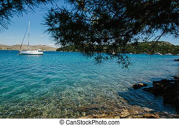 beautiful sailboat sailing