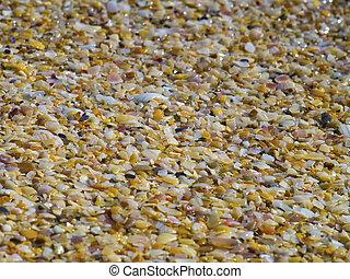 Beautiful sand on the beach close up
