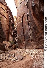 Buckskin Gulch - Beautiful sandstone wall of Buckskin Gulch...